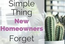Owning the home / I'm learning how to be a homeowner, first time homeowner mistakes and lessons, how to maintain a house after buying our first house in 2015.