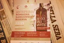 Vini ad Arte 2015 - Faenza / Anteprima del Romagna Sangiovese riserva 2012