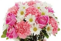 New Baby Bouquets / Welcome a new life into the world with lovely blooms!