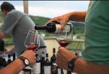 #WineBuds - 10 giugno 2016 / WINE BUDS, DI COSA STIAMO PARLANDO? Wine Buds è una community di giovani winemaker (nati dal 1980 in poi) residenti nell'area Unesco Langhe-Roero e Monferrato.   WINE BUDS, IL PRIMO EVENTO Venerdì 10 giugno 2016, alle ore 17:00, a Barbaresco presso l'azienda Tenute Cisa Asinari dei Marchesi di Gresy.   SCOPRI DI PIU'... http://www.wellcomonline.com/winefacts/wine-buds/