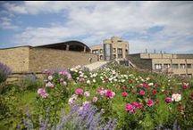 EM Winery - Press tour / Dal 6 al 9 Giugno 2016 un gruppo di giornalisti ha preso parte al press tour dedicato alla cantina EM Winery di Elenovo, nella Thracian Valley in Bulgaria.  SCOPRI DI PIU'... http://www.tenutacarretta.it/blog/2016/06/21/edoardo-miroglio-tracia-bulgaria-press-tour/