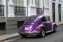 Purple is my signature color!! / by Kris Olsen