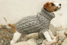 DIY to the doggie / You don't have to buy everything that your dog need - do something by yourself.