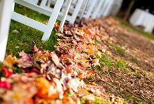 Casual Late Fall Wedding