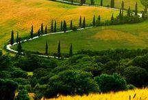 ilsalviatino>massimo>miavita® / Tuscany