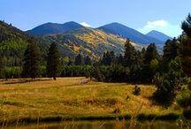 Arizona, Home sweet home / Enjoy the breath taking beauty and spacious skies! / by Randi Clark
