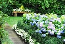 Gorgeous Gardens / Stunning outdoor environments / by RISMedia