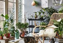 cosy corners / Places where you want to hang out and snug up
