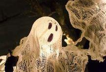 Halloween / by Stevenie Tremblay