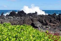USA - Hawaii, Kona & Hilo
