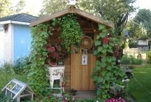 potting sheds / by Judy Sargis