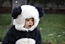 Pandas ❤