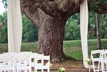 Let's get married!  - themes / Wedding Ideas