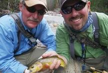 Fly Fishing / Fly Fishing in Eastern Utah can be a mix of large brutish trout from swift tailwaters all the way to the most beautiful brookies and cuttroats found in crystaline streams at well over 10,000 feet in elevation.