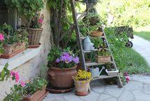 Garden / Garden stuff & ideas