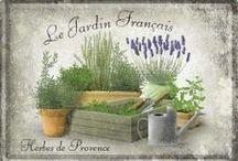 Jardin Jardin / herbs and vegetables kitchen garden  https://en.wikipedia.org/wiki/Kitchen_garden  plus