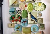 China plate displays / Thinking about doing a display on one of my walls.