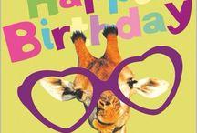 Leuk  happy birthday