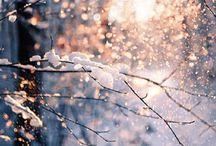 Winter / Mooi winters