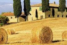 Beloved Tuscany / hidden corners, open landscapes, little hamlets, lovely towns... beautiful, amazing region!