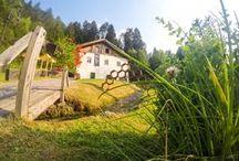 """Il Mulino di MMape / L'antico mulino ad acqua che ospita il MMape si trova alla distanza di circa 1 km dall'abitato di Croviana, all'interno dell'area protetta denominata """"Ontaneta di Croviana"""" e riconosciuta come sito di interesse comunitario (SIC).  Da qui partono numerosi sentieri adatti ad ogni tipo di passeggiata ed a 100 metri si può imboccare la ciclabile della Val di Sole in entrambe le direzioni."""