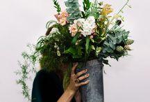 Florist shop future