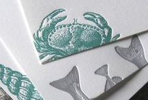 Embellishments + Binding / Beautiful graphic design with technical embellishments