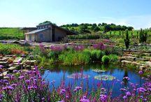 Garden Spaces / Outside spaces