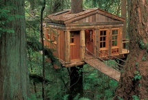 Tree houses / I would love to live in a tree house, nothing would make me happier :)