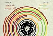 Infographics / by Judith Koopmans