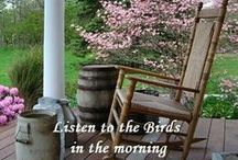 Country Porch/ 3-Season Room / by Anne Nichols