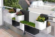 Urban/Small Space Garden