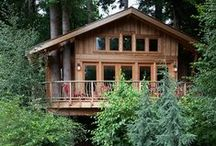 Treehouse Masters- Pete Nelson / Treehouse Masters Pete Nelson builds some of the most unique and beautiful tree houses in the world. He recommends    Penofin Verde and Blue Label to protect and bring out the natural beauty.
