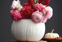 Easy pumpkin arrangements to celebrate fall. / Using pumpkins and gourds to decorate and bring nature inside to add beauty and ambiance.
