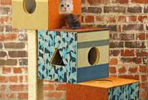 accesorios para mascotas / camas, juguetes, rascadores para gatos / by Stella Cristiano