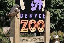 Fun things to do in Denver. / Denver, Colorado places.