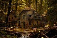 ツ Mystical Forest / The alluring beauty of mystical and enchanted forests! / by Natures Allure
