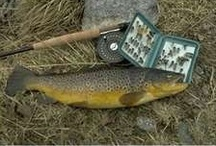 Fly Fishing & Fly Tying / Pictures of flies, fish, and the art of fly fishing.  / by Lacy Gates