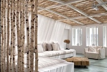 birch decor / Bjork in icelandic :)