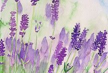 {Colour Love} - Lavender