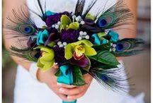 Shans wedding