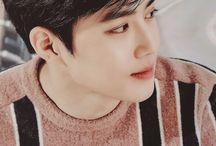 suho / • kim jun myeon •