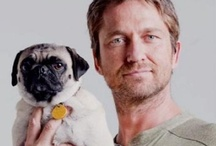pugs and famous owners