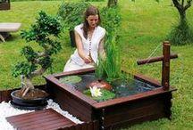 Bassins d'extérieur / Reposant et apaisant, les bassins d'extérieur apporteront un peu de fraîcheur dans votre jardin.