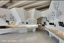 MUSEOGRAFIA E INSTALACIONES / by roberto saldana