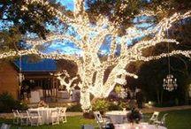 lighting  >//< / lighting light bulbs string lights night wedding outdoor