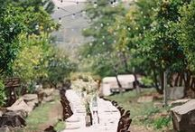 organic style >//< / organic natural outdoor wedding woods trees grass eco-friendly hippie