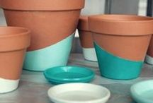 DIY plants & outdoors >//<