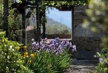 Pergola, portaler, tak i trädgården / Vackra portaler och  tak