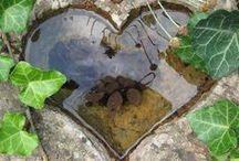 Vatten i trädgården-Water in the garden / Vatten i trädgården